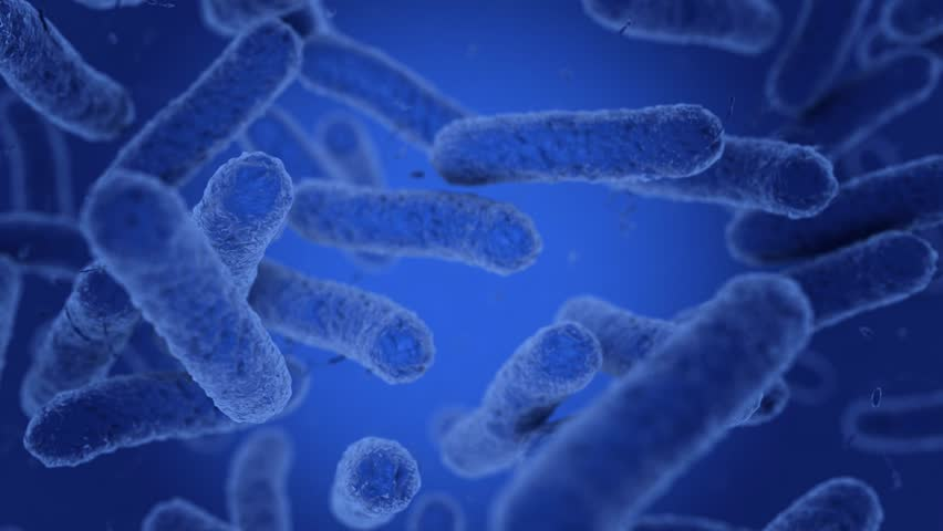 Bacteria in blue are moving. 3D Render | Shutterstock HD Video #1023067879