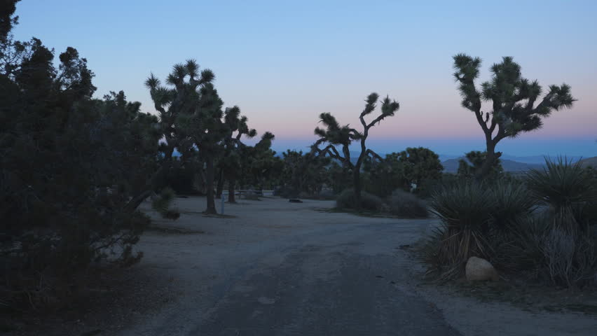 JOSHUA TREE, USA on Jan 1st: Leaving closed campground on Jan 1st, 2019 in Joshua Tree National Park, California, USA. National Parks across the US were closed as part of a federal government shutdown