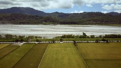 Aerial landscape view with rice fields, mountains and river. Pedestal movement. Taiwan, June 2017