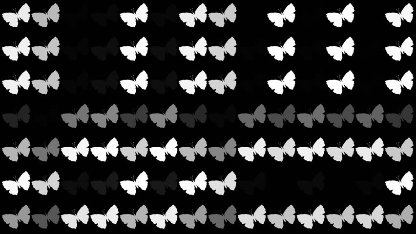 Butterfly elements animation....Hud elements ...Overlay background   Shutterstock HD Video #1023626149