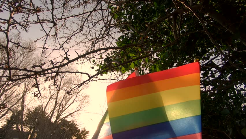 LGBT Pride Rainbow Flags In Cinematic Slow Motion Outside   Shutterstock HD Video #1023993689