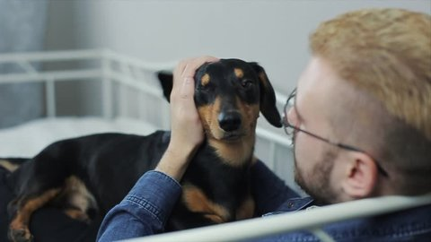 Young cheerful stylish man playing with the dog dachshund on the bed. Man and dog having fun.