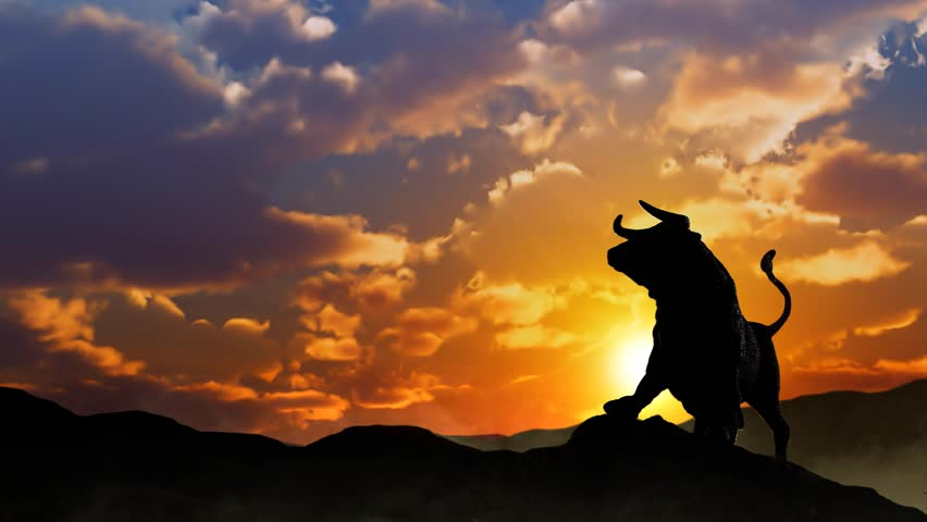 Stock Market Bull Silhouette at Sunrise Loop features the silhouette of a the stock market bull on a hill with a sunrise behind and mist at its feet
