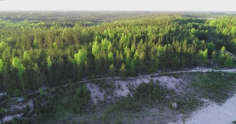 Aerial, drone shot, above a sandpit, over endless, light green, vibrant spring forest, finnish birch and pine trees of woodlands in Scandinavia, on a sunny, summer evening, in Finland
