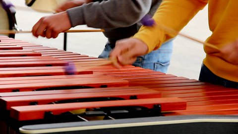 Two kids playing xylophone with purple ball mallets. Children performing at concert with percussion musical instrument. Arts, song, melody concepts