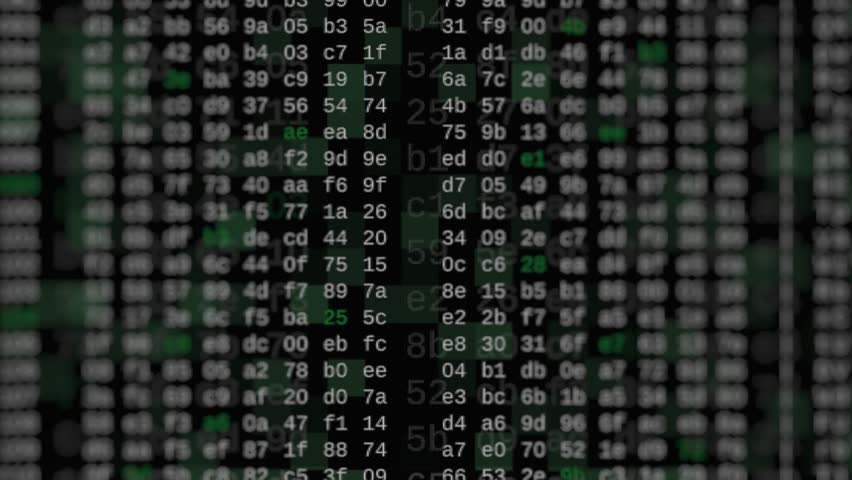 Close up view of hexadecimal code scrolling on screen, concept of hacking, internet, big data, software developing (3d render) | Shutterstock HD Video #1028389379