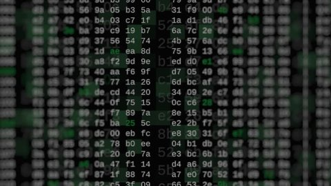 close up view of hexadecimal code scrolling on screen, concept of hacking, internet, big data, software developing (3d render)