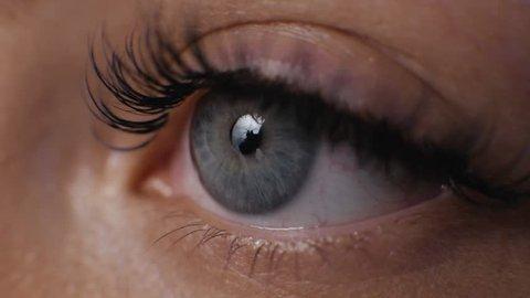 Female macro woman eye with long eyelashes close up, hollywood length beauty salon