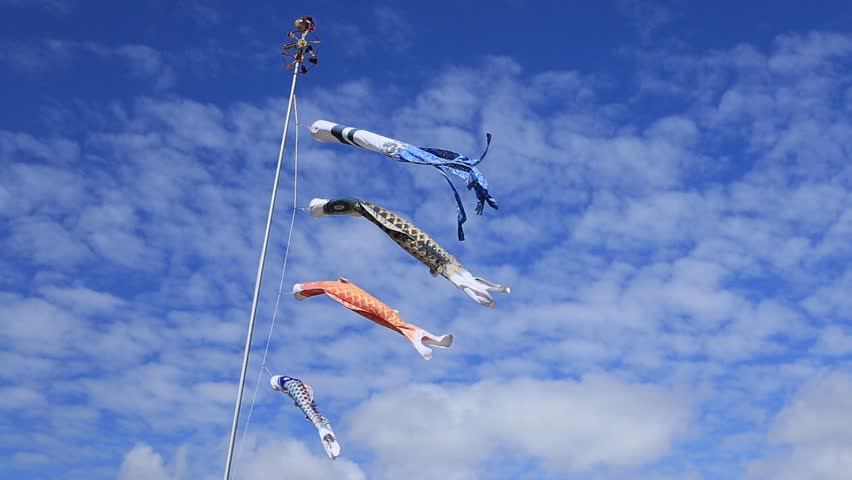 "We hang up the carp streamers called ""Koinobori"" on Children's day. 