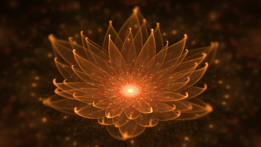 Glowing Orange Lotus, Water Lily, Enlightenment or Meditation, Magic scene - Space flower, starry lights, fairy dust and universe, serene  motion on black background, animation,  seamless loop