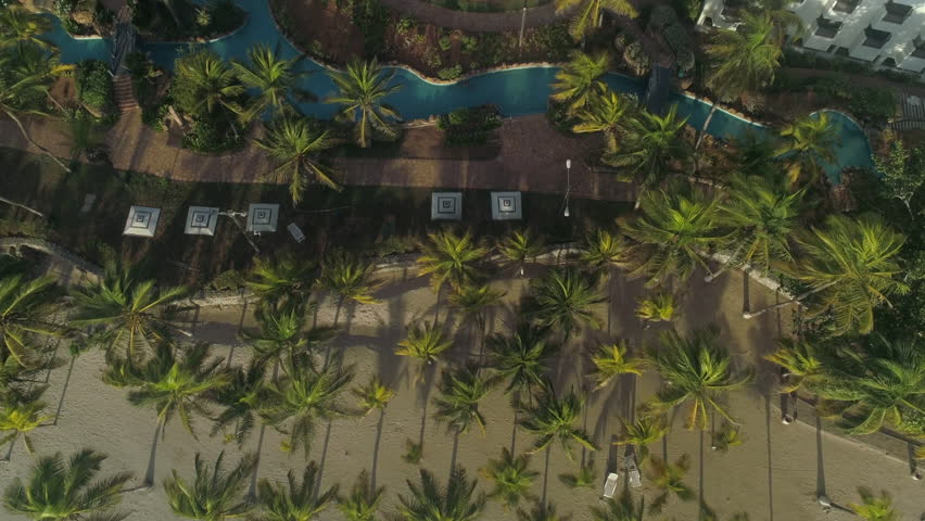 Charming aerial view of a famous hotel on the shores of the Caribbean Sea, amazing natural environments of palm trees in the sand and rivers of the pool. A place to relax and enjoy in Margarita | Shutterstock HD Video #1028933939