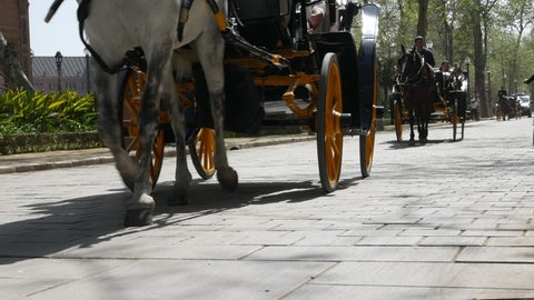 Seville, Spain - march 18, 2019: Tourist ride in traditional horse carriage