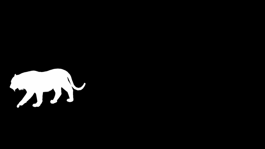 Tiger Silhouette 3d Transparent Alpha Stock Footage Video 100