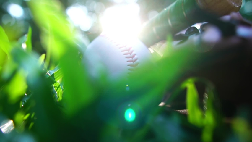 Close-up that baseball and the equipment is placed on the lawn with a warm light of sunset footage slow motion | Shutterstock HD Video #1030228559