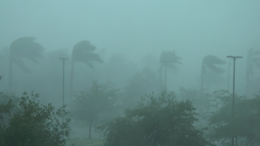 Hurricane Irma Blinding White Out Wind And Torrential Rain | Shutterstock HD Video #1030524539