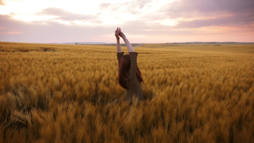 A young girl happily walking in slow motion through a field touching with hand wheat ears. Beautiful carefree woman enjoying nature and sunlight in wheat field at incredible colorful sunset | Shutterstock HD Video #1030587539