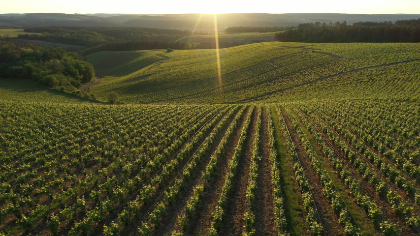 France, Champagne-Ardennes, Aerial view of Champagne vineyards, Aube department, Les Riceys, listed as World Heritage by UNESCO | Shutterstock HD Video #1030690319