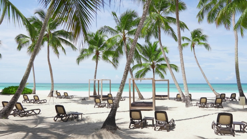 Sun loungers on white sand beach amazing island. Summer vacation in Caribbean sea hotel with palms and Sun loungers. Best beaches in the world. Deck chairs at beautiful island beach. Paradise island | Shutterstock HD Video #1030978229