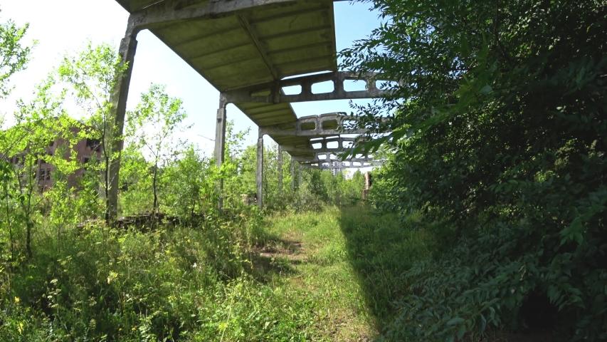 Man walks through abandoned ruins. Quickly runs back. Concept of urban exploration. | Shutterstock HD Video #1035308939