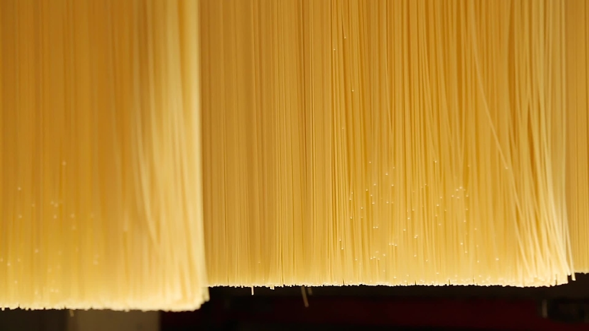 Pasta factory. Production of pasta on a modern production line.  | Shutterstock HD Video #1035489659