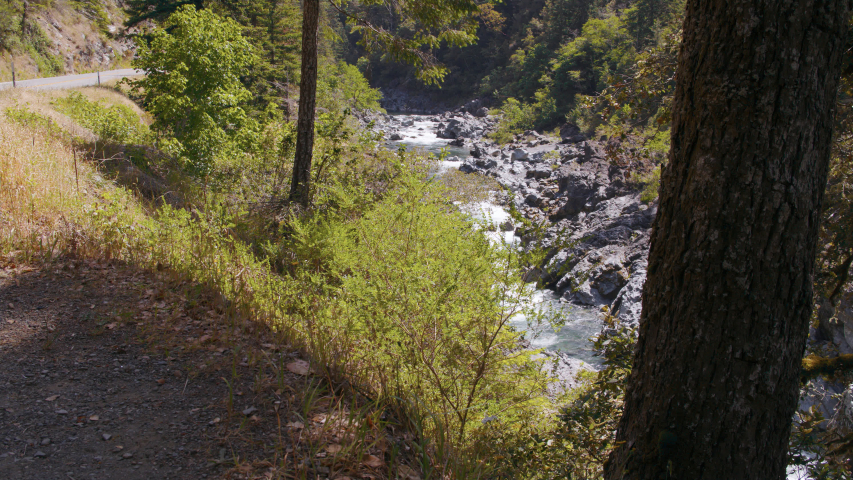 Smith River mountain creek and Highway 199 | Shutterstock HD Video #1035601229