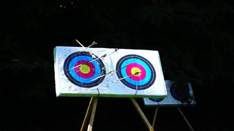 Archery. The arrow hit the target. Slow motion.