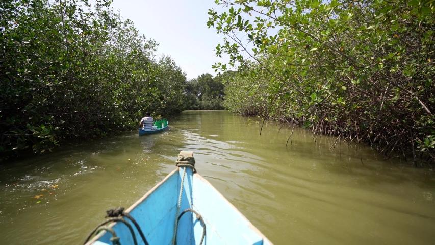 Mangroves in South America. Shipping in Mangrove forest in Peru, South America | Shutterstock HD Video #1037109839