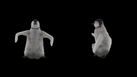 Penguin CG fur 3d rendering animal realistic CGI VFX Animation Loop  composition 3d mapping cartoon, with Luma matte
