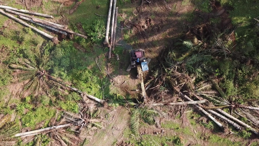 The excavator cleared the land. | Shutterstock HD Video #1038737129