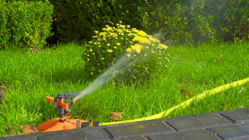 Sprinkler head of automatic watering the bush, grass and lawn. Spraying water over green grass. Irrigation system | Shutterstock HD Video #1038786149