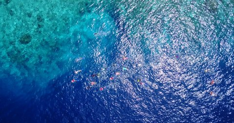Group Of Tourists Exploring The Tropical Sea Great Barrier Coral Reef And People Snorkeling Aerial
