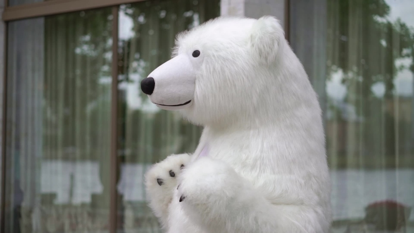 Person in a costume of white bear. Polar bear puppet outdoors party