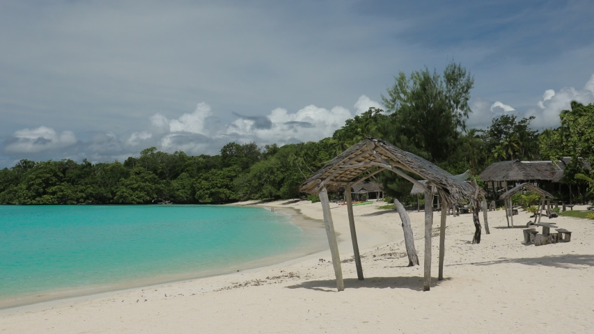Port Orly sandy beach with palm trees, Espiritu Santo Island, Vanuatu. | Shutterstock HD Video #1045434619