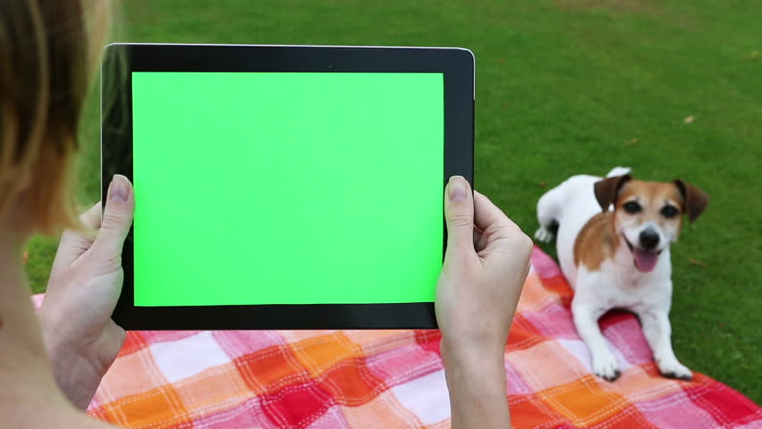 Over the shoulder shot of  woman using tablet computer with a key green screen. Picnic summer weekend. Outdoor recreation with cute dog  Jack Russell Terrier. Video footage. Canon 24-70mm #10460639