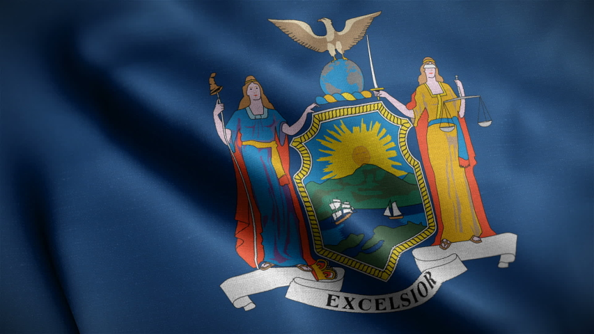 Closeup view of New York state flag. The states great seal and symbol. One of the USA 50 states. Flag waving and blowing in wind. loopable 16 seconds video. High quality cloth textures.  | Shutterstock HD Video #1046668639