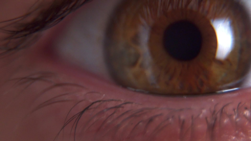 Close up macro shot of brown male eye opening and looking at camera | Shutterstock HD Video #1048753819