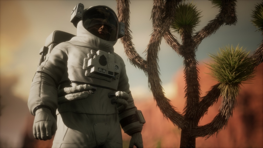 Astronaut in the high desert of Nevada | Shutterstock HD Video #1049332279