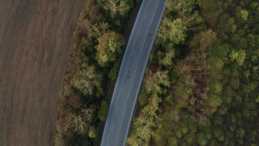 Drone flight over colorful autumn forest with empty road without cars in nice morning light, close up top view | Shutterstock HD Video #1049654539