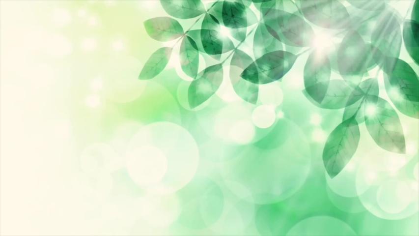 Fresh greenery, swaying leaves and sunbeams, loop animation video | Shutterstock HD Video #1049720689