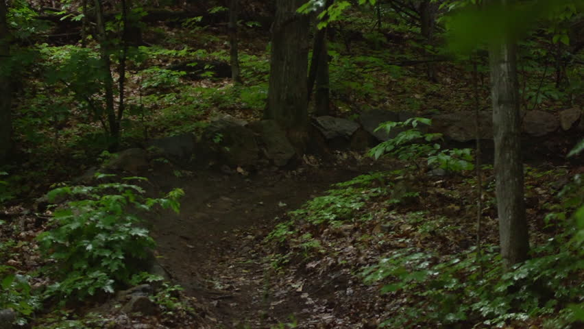 Extreme Sport Mountain Bike - slow motion racing   Shutterstock HD Video #10498499