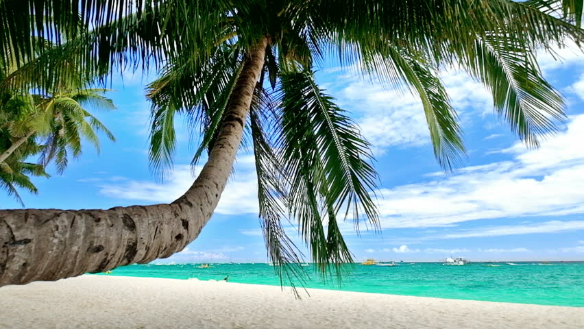 Amazing Tropical Beach Landscape With Palm Trees White Sand And Turquoise Ocean Waves Philippines Travel Landscapes Destinations Stock Footage Video