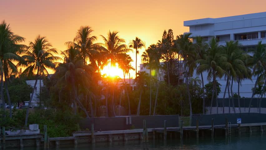 Miami Beach Gulf Bridge Palm Tree Sunset 4k Florida Usa Stock Footage Video 10572329