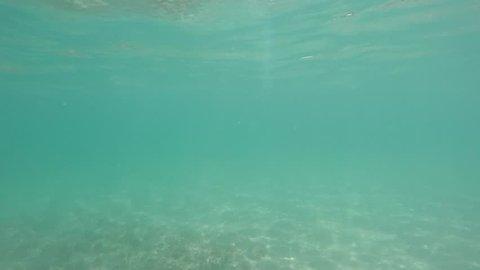 Stone Falling in Water, Filmed Stock Footage Video (100% Royalty-free)  10586069 | Shutterstock
