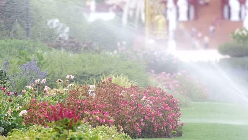 Chiang Mai, Thailand - Jine 26, 2015: watering flowers in the Royal flora of Thailand,  Jine 26, 2015 in Chiang Mai, Thailand   Shutterstock HD Video #10590179