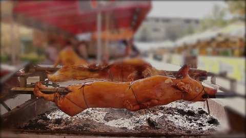 Pig is roasting on a spit. Roasting pig is prepared for festivities to sale. Pig is over fire pit being automatically turned.
