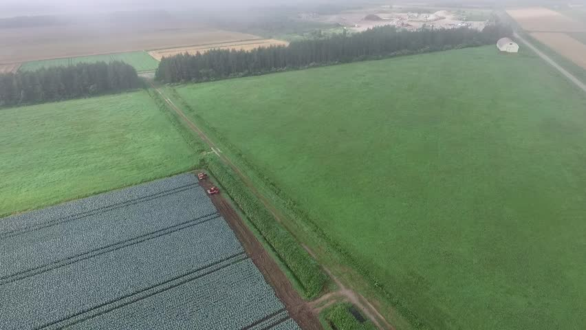 Early in the morning and imaging empty the countryside of fog in the drone. _5 / August 2, 2015 to the shooting Hokkaido countryside of Japan / Grass field that is wrapped in fantastic fog.   Shutterstock HD Video #11043119