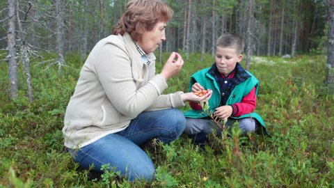 Mature mother holding fresh cloudberries in hands while boy eating it, mosquitoes around