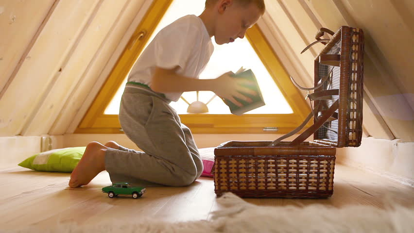 Toys In The Attic Definition Meaning