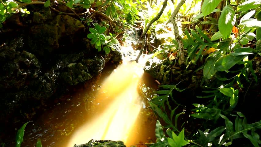 Waterfall in chiangmai Thailand | Shutterstock HD Video #11684549