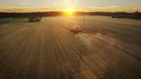 Aerial drone shot of a combine harvester working in a field at sunset. Shot in 4K (UHD).